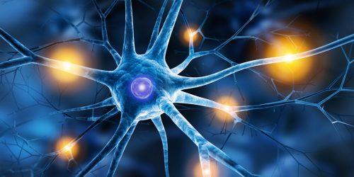 Imaginative Trancetherapie | Praxis Dr. med. Pia Sack | Psychotherapie - Bindungsanalyse - Klangtherapie - Trancetherapie - Gesundheitscoaching - Rehabilitationscoaching